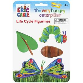 Insect Lore Very Hungry Caterpillar Life Cycle Stages